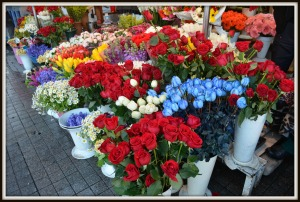 Cut flowers at Taksim Square